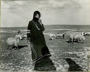 arab_shepherdess_with_sheep