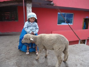 my-patient-and-her-pet-lamb_26242969112_o