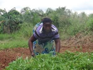 Ambana with part of her vegetable garden