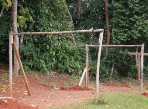 Temporary bamboo clothesline